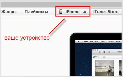 Разделы iTunes
