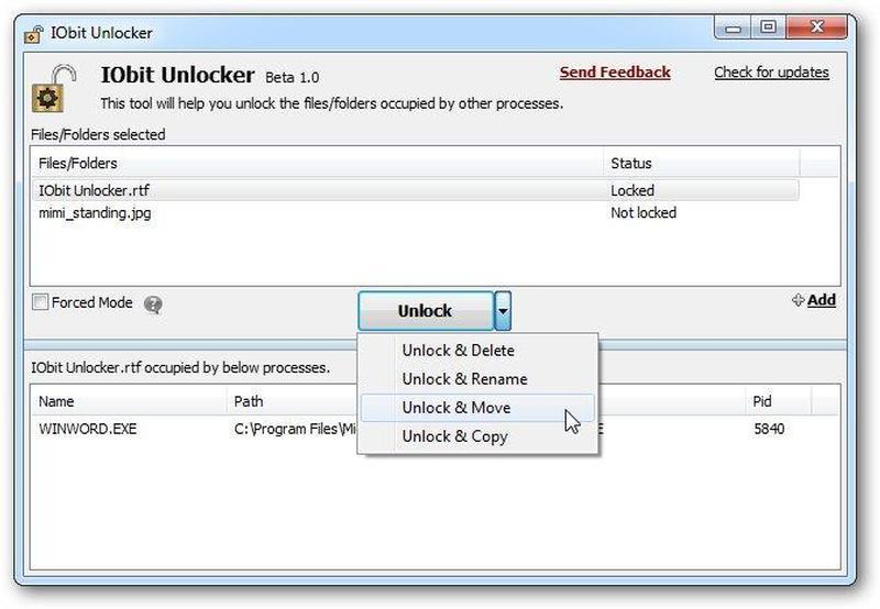 Интерфейс IObit Unlocker