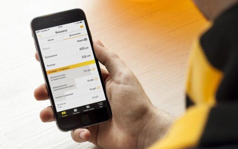 Как заказать детализацию звонков и счёта в Билайне
