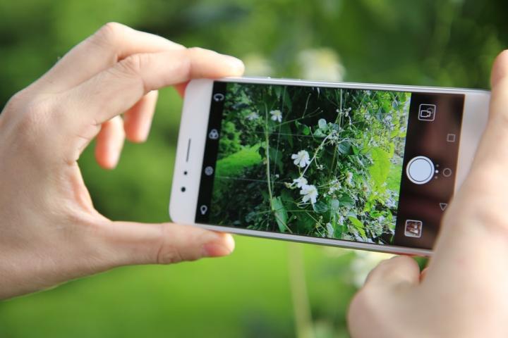 Дисплей смартфон Honor 8X