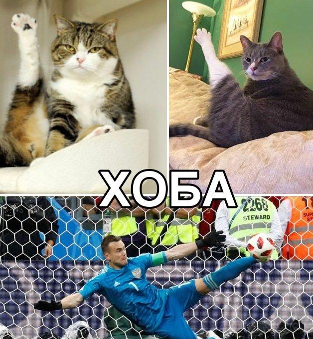 Мем с Игорем Акинфеевым Хоба