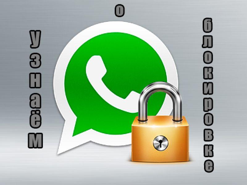 Как узнать, что тебя заблокировали в WhatsApp: способы проверки