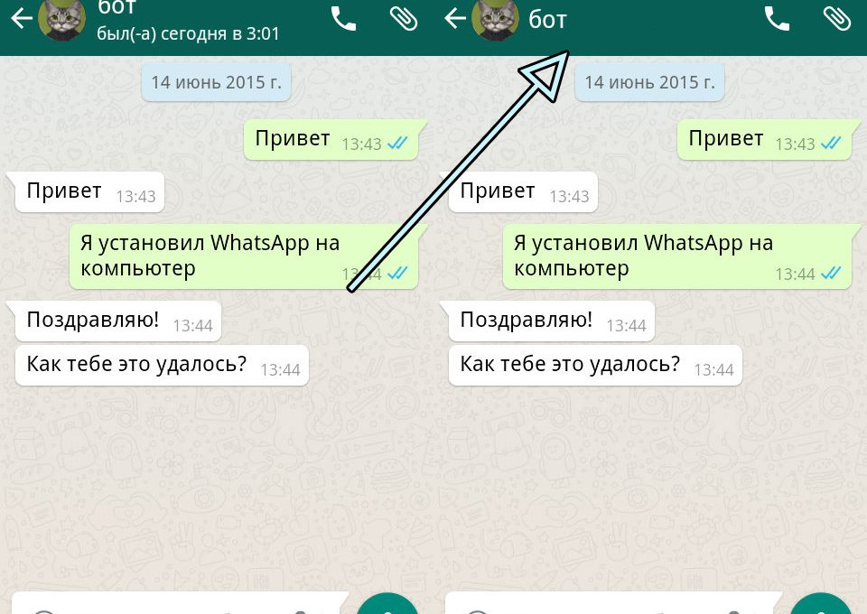 Статус собеседника в WhatsApp