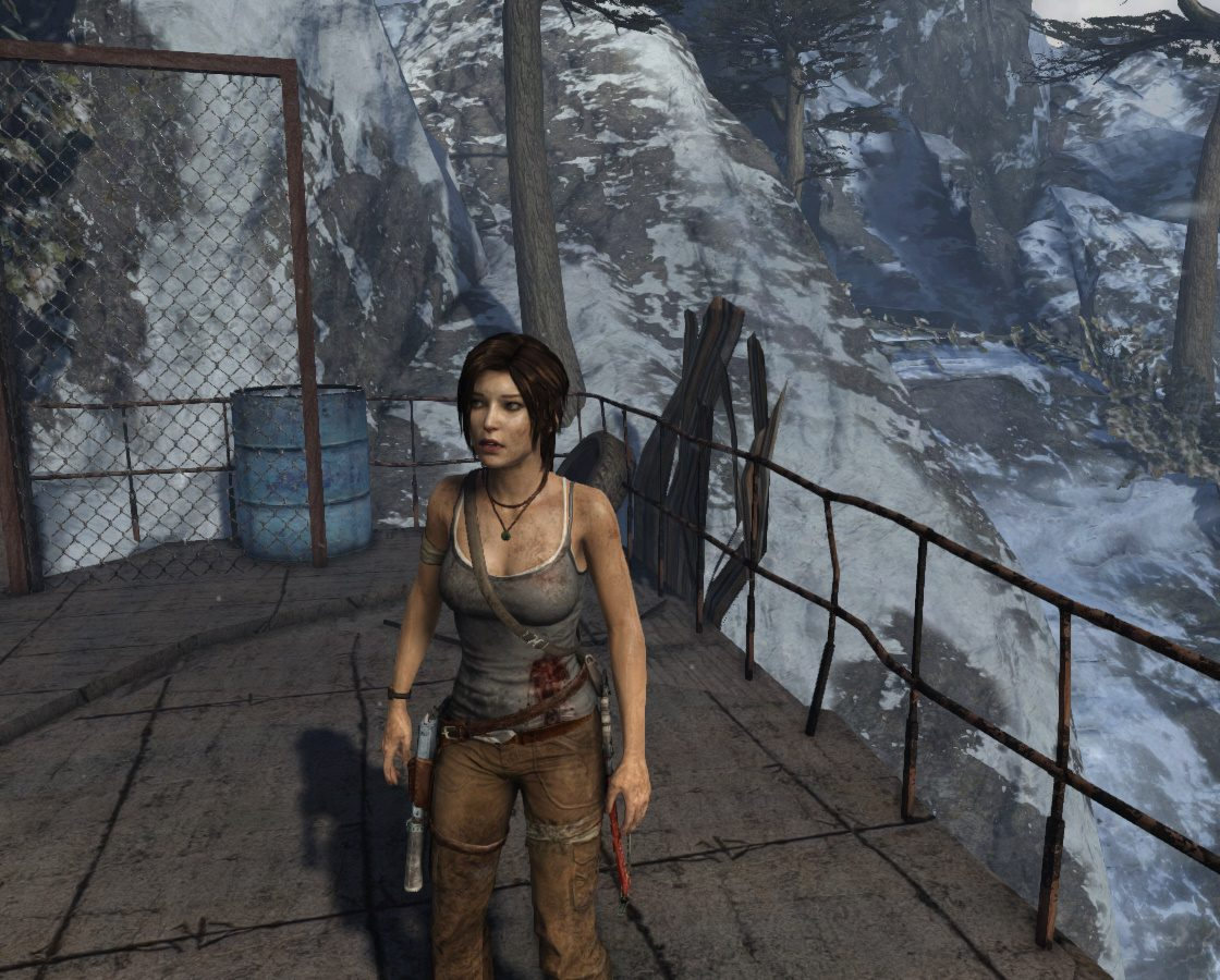 Игровая сцена в Tomb Raider